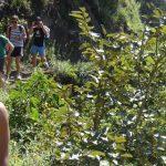 Camino Inca Jungle Trek 4 Dias de Tour